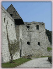 The Castle of Eger
